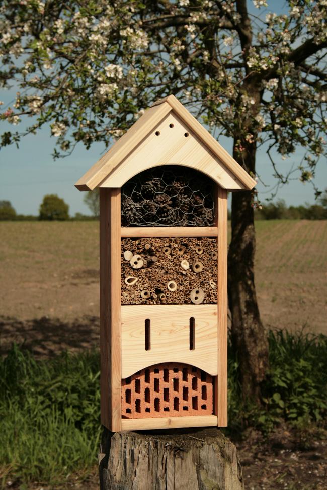 goldrabe insektenhaus f r wildbienen mit. Black Bedroom Furniture Sets. Home Design Ideas